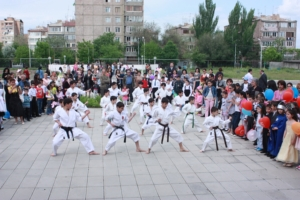 Armenia IDF Martial Arts Demonstration [320x200]